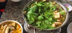 Cách nấu lẩu gà lá é – lá quế