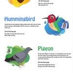 9 thuật toán tìm kiếm quan trọng nhất của Google